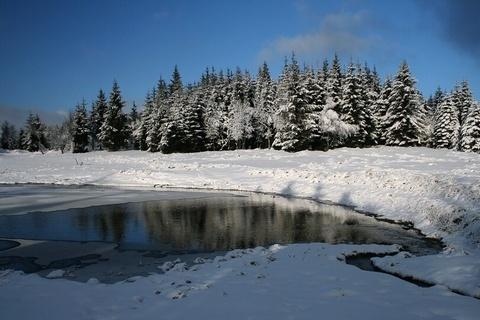 FOTKA - Zimní rybník