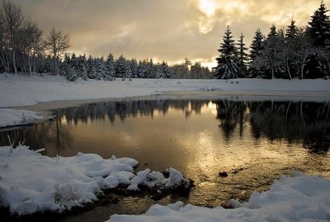 FOTKA - Zimní rybník.