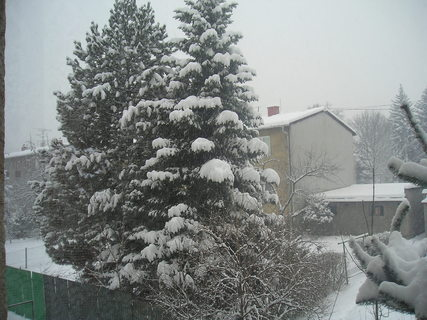 FOTKA - Dnešní sníh..