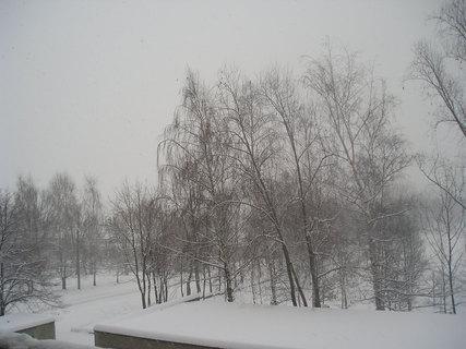 FOTKA - Dnešní sníh...