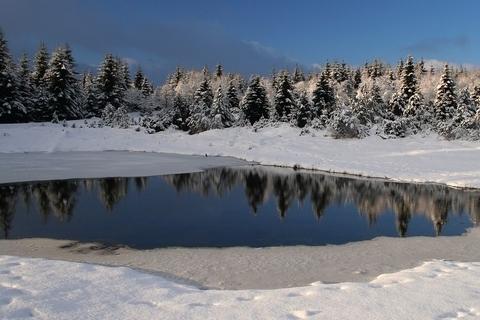 FOTKA - Zimní rybník..