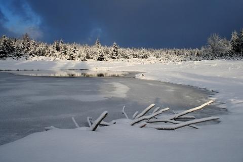 FOTKA - Zimní rybník...