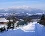 Zimní cesta