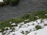 Sníh u potoka - pomalu taje
