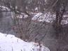 Zimní řeka Berounka