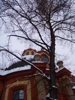FOTKA - pohled na kostel . . . .....