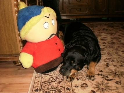 FOTKA - Roxy s novou hráčkou - 17.1.2010.