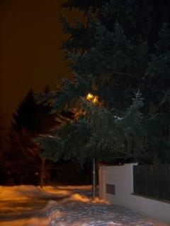 FOTKA - schovaná lampa