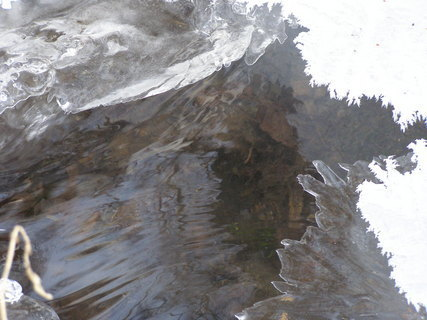 FOTKA - Zima2010*