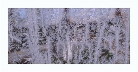 FOTKA - mrzne jen praští