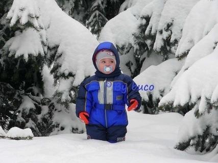 FOTKA - Kde je dědeček mrazíček ?   :-)