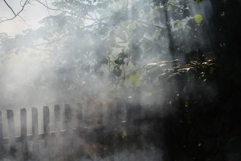 FOTKA - Kouř I.