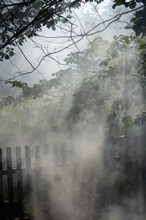 FOTKA - Kouř II.