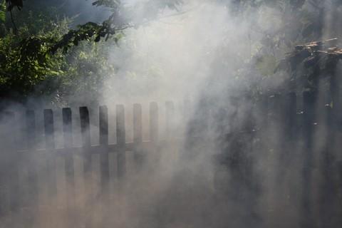 FOTKA - Kouř III.
