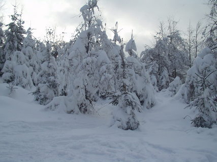 FOTKA - Pravá zima na horách