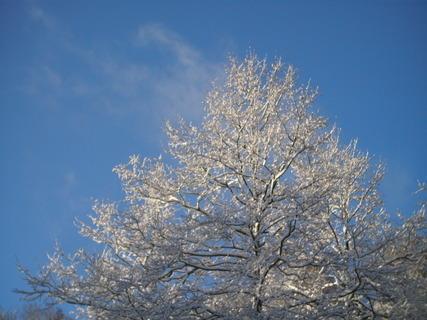 FOTKA - Zima je dlouhá