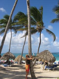 FOTKA - Relax u palmy