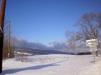 FOTKA -  Zimní louka zalitá sluncem - 3.2.2010