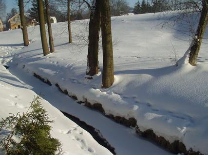 FOTKA - Krásné zimní odpoledne