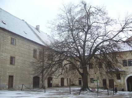FOTKA - Třebíč-bazilika,,,,