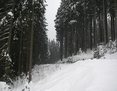 FOTKA - ..v Beskydech...