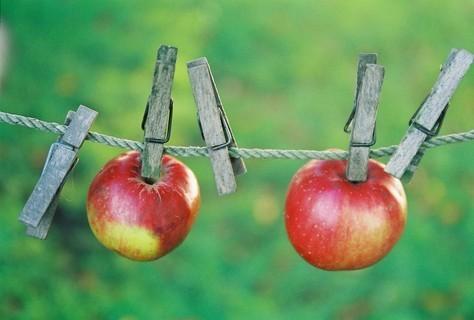 FOTKA - Jablíčka