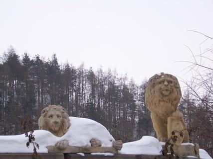 FOTKA - lví hlídači - obchod