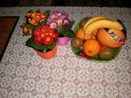 FOTKA - Primulky a ovoce  na stole v kuchyni  - 20.2.2010