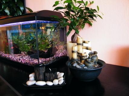 FOTKA - Zátiší s fontánkou a akváriem