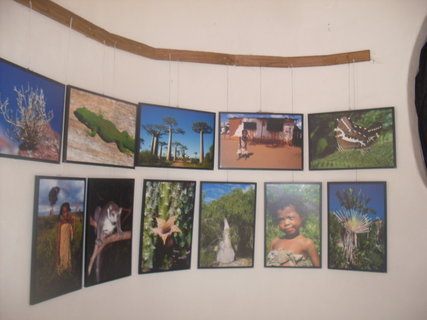 FOTKA - výstava v zoo jihlava