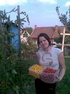 FOTKA - Není nad domácí rajčátka