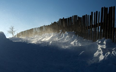 FOTKA - Severní vítr je krutý