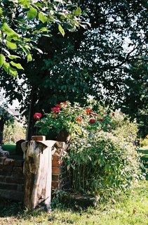 FOTKA - Letní zahrada I.