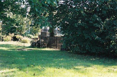 FOTKA - Letní zahrada II.