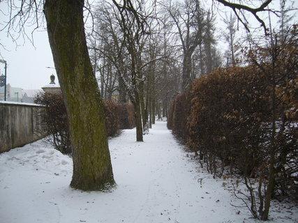 FOTKA - Zámecký park