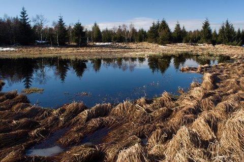 FOTKA - Černý rybník .