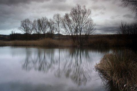 FOTKA - Mezi zimou a jarem
