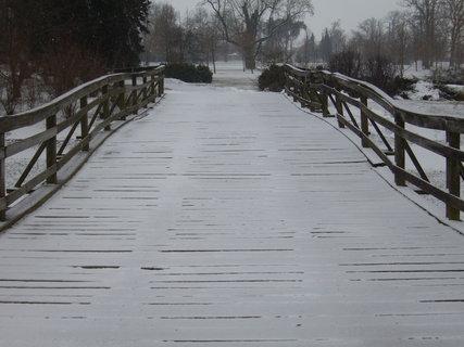 FOTKA - Most v parku