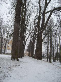 FOTKA - Zámecký park J.n R............