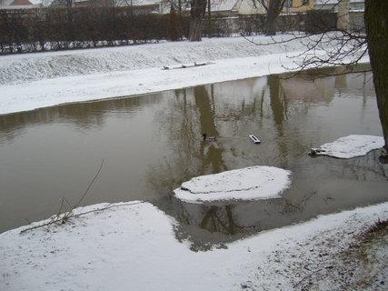 FOTKA - Zámecký park J.n R....................