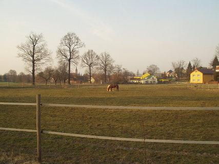 FOTKA - Krásný kůň