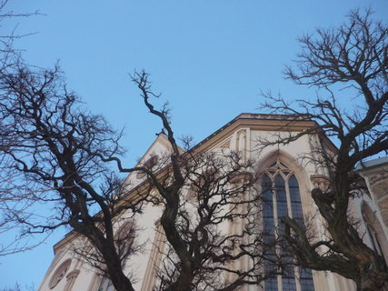 FOTKA - kostel za vetvemi