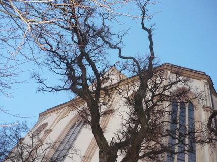 FOTKA - kostel za vetvemi2