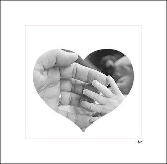 FOTKA - ze srdce