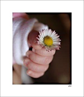 FOTKA - z lásky k mamince