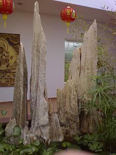 FOTKA - Vstupní hala v botanické zahradě
