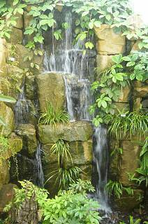 FOTKA - vodopád v botanické zahradě