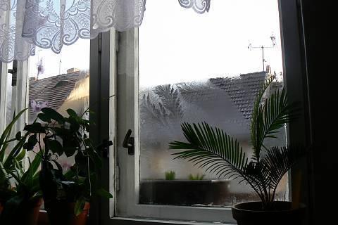 FOTKA - ledové květy,na okně