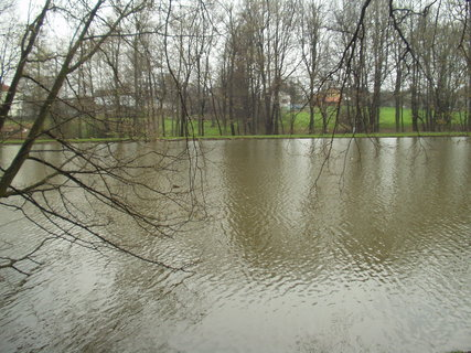 FOTKA - Pohled na rybník