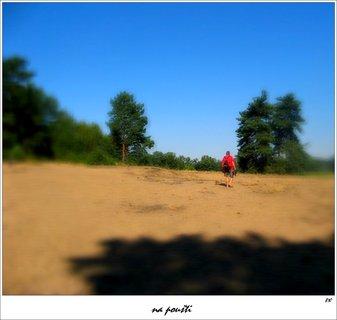 FOTKA - poušť - jižní čechy
